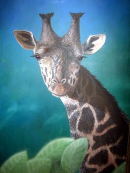 20110721115138-giraffe