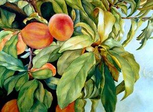 20110724000456-peaches