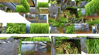 20110725210827-going_green_h