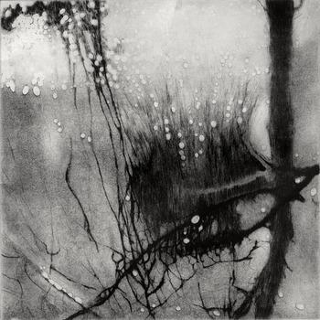 20110730084018-hunt_anita_submerged