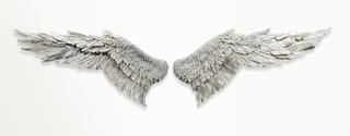 20110802172423-wings_wings_wings