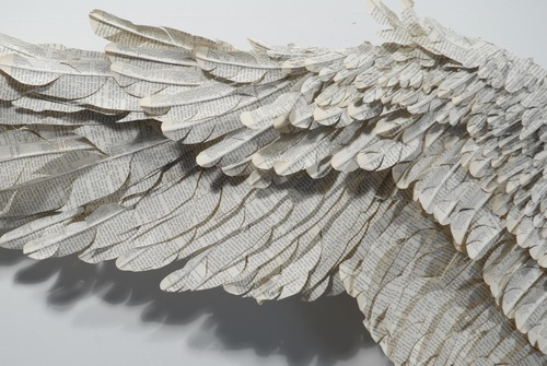 20110802172547-wing_closer