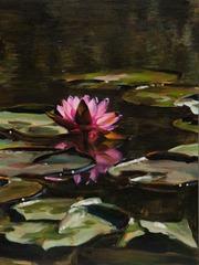 20110805113034-water_lilies_xiv