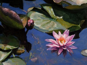 20110805150144-water_lilies_v
