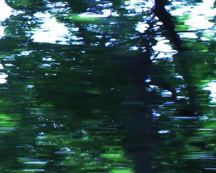 20110806122012-ginafuenteswalker-no