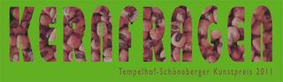 20110812232416-01_e_kunstpreis_2011