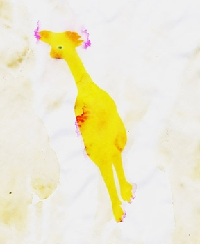 20110816104754-chicken