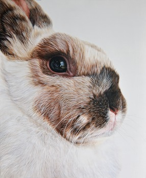 20110816144221-bunny
