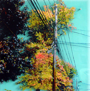 20110824062835-power_line_tree_4_enamel_on_acrylic_sheet_24x24in_2009_lr
