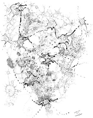 20110826185248-biology_of_an_idea