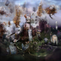 20110901094155-havalina_web_berens