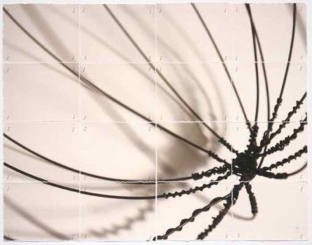 20110902174417-ep_seed_26x21x1