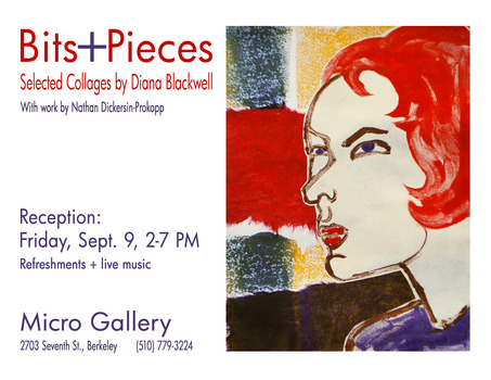 20110904065628-micro_gallery_collage_flyer_copy