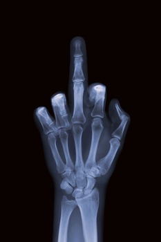 20110906153514-nv_10-026_the_finger__47_x_59__c-type_print_-_diasec
