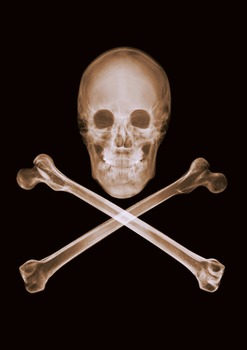 20110906153625-nv_10-003_skull_and_crossbones__16