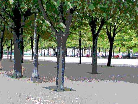 20110906222258-trees_in_park-paris-v2