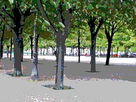 20110906222258-trees_in_park-paris-v2