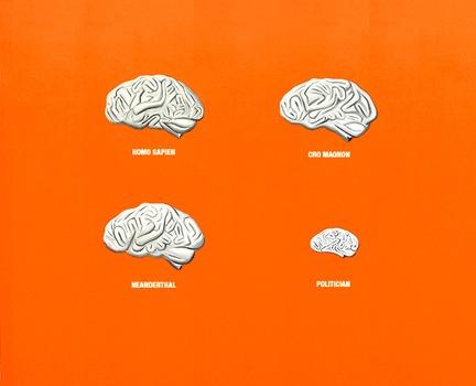 20110907200625-brains