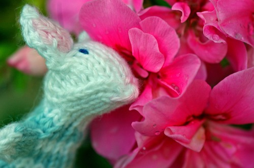 20110910220903-mousy_lady_smelling_pink_flowers