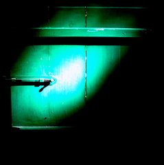 20110915084909-1_narciso_para_capa