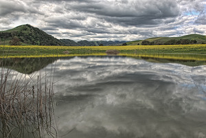 20110920205719-mustard_lake_napa_jim_kohatsu