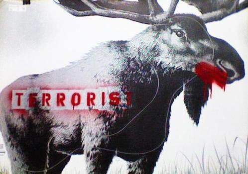 Victor_wild_moose