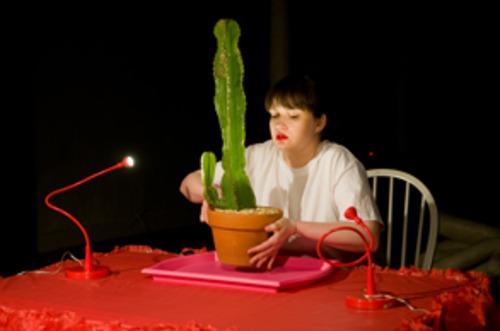 20110921223522-cactus1