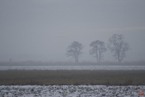 20120314141650-smog_lake_city_6