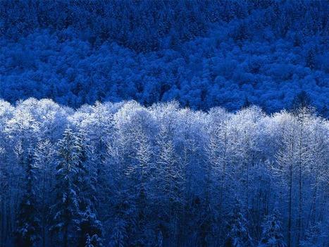 20110923172147-winter