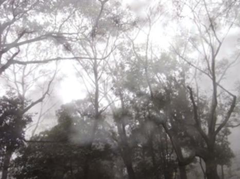 20110928101049-shiho_kano-shinonome_omogo_ishizuchi