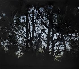 20110928103749-cuando_calla_el_viento