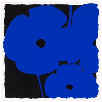 20111011115842-sultan_poppies__jun_6__blue_