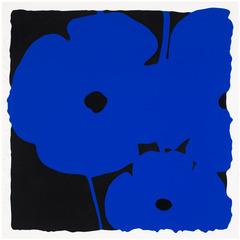 20111011115842-sultan_poppies__jun_6__blue_