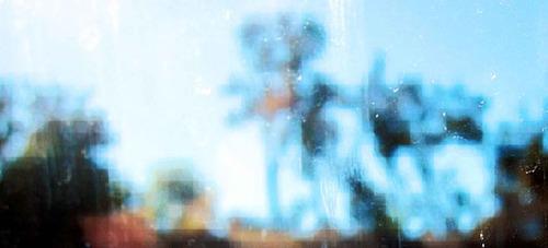 20111013144300-rex_bruce109