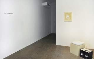 20111021125136-installation_view_1-fnl_web
