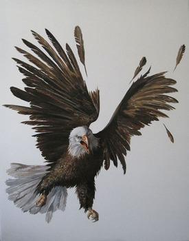 20111029045848-eagle72