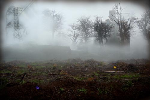 20111031152131-soil_3