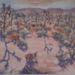 20111106105128-hi_desert_shadows
