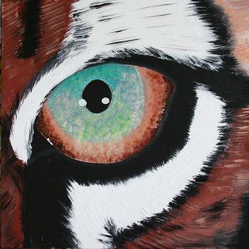20111109101823-tiger_eye_20