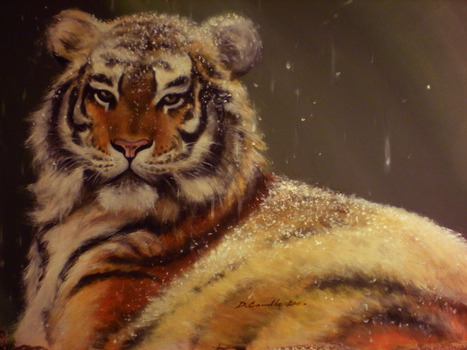 20111111021654-tiger_in_snow