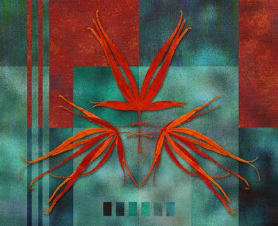 20111112170836-studyinturquoiseand_coral