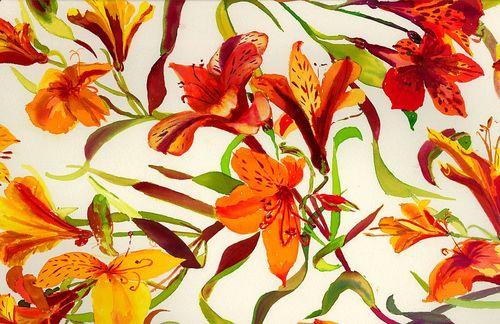 20111112235839-orange_flowers_1