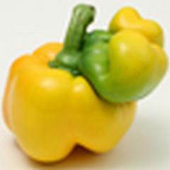 20111115032155-dv-thum-paprika