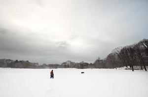 20111117173657-long-meadow-north-no-2