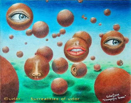 20111119125453-udor-champaignedream-wb
