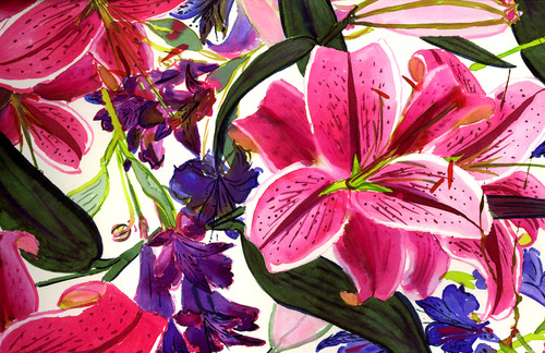 20111121194835-pink_flowers_web