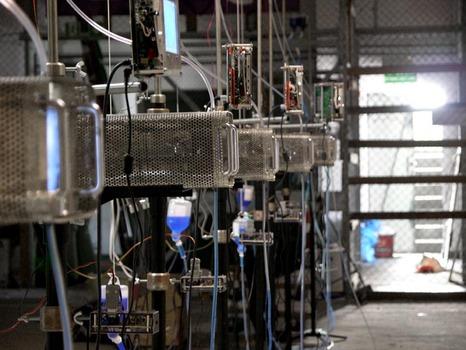 20111125023629-andrzej_wasilewski_-_transfusion__10_