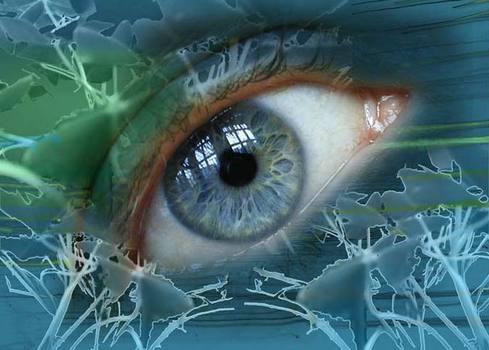 20111126123703-storyeye