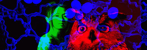 20111126185648-woman_fungus_owl