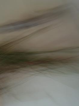 20111128064255-p1010967_140dpi